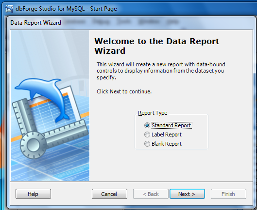 Data Report Wizard