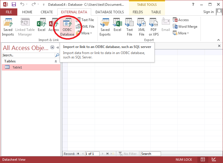 How to retrieve data from Dynamics CRM to MS Access using ODBC